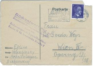 BirkenauWeys adres